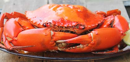 Baked Crab Recipe